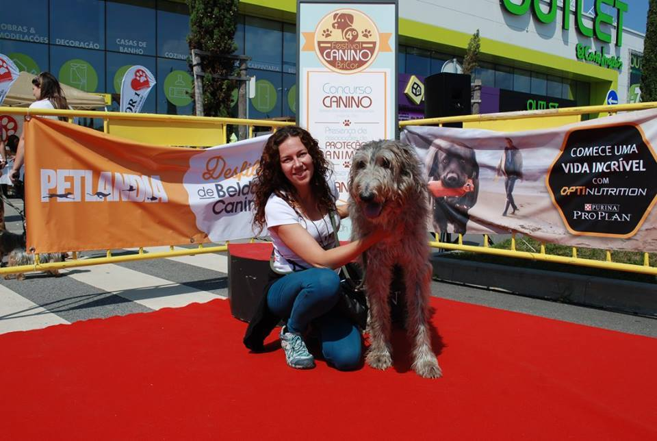 Festival Canino Bricor